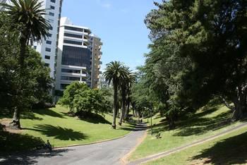Im Cornwall Park, Auckland