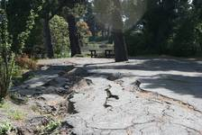 Vom Erdbeben aufgerissener Weg in New Brighton in der Nähe von Christchurch
