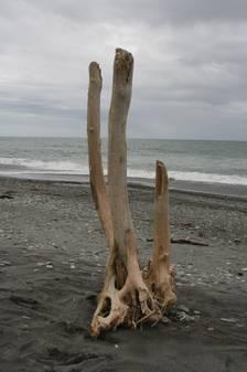 Strandimpressionen in Hokitika die 3.