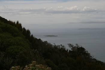 Im Vordergrund Dog Island, im Hintergrund Ruapuke Island