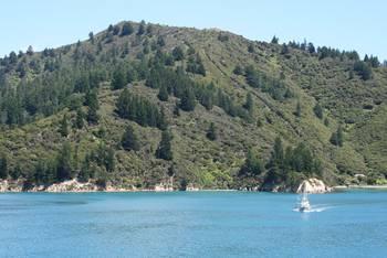 An der Erie Bay im Marlborough Sound