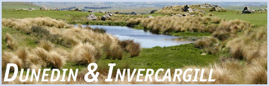Herzlich willkommen auf meinem Reisetagebuch Invercargill und Dunedin in Neuseeland